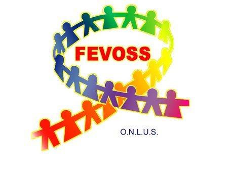 Collaborazione con Fevoss